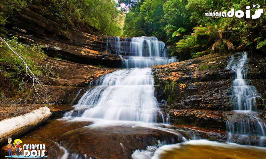 Mount Field National Park – Tasmania
