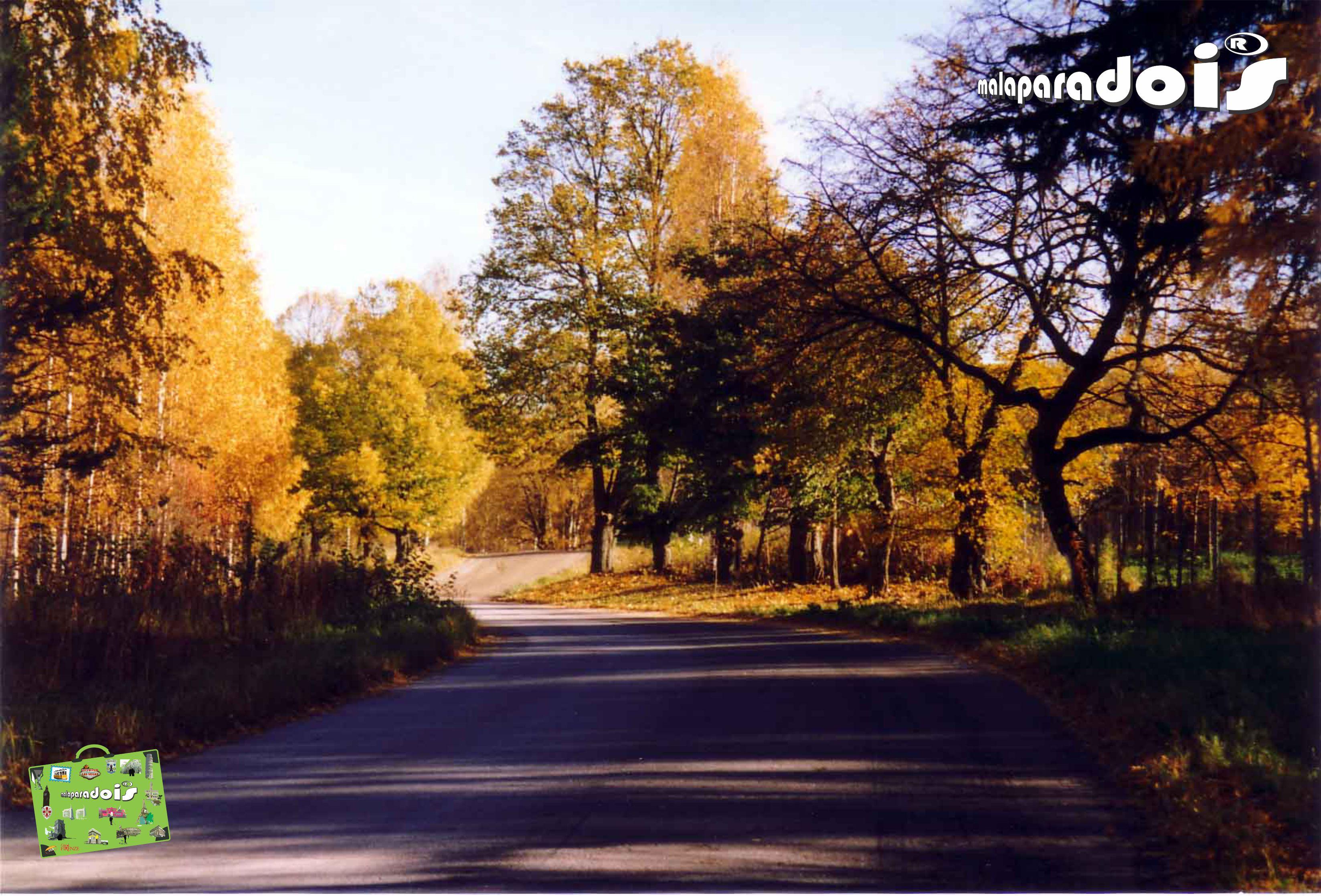 As cores do Outono na Finlândia