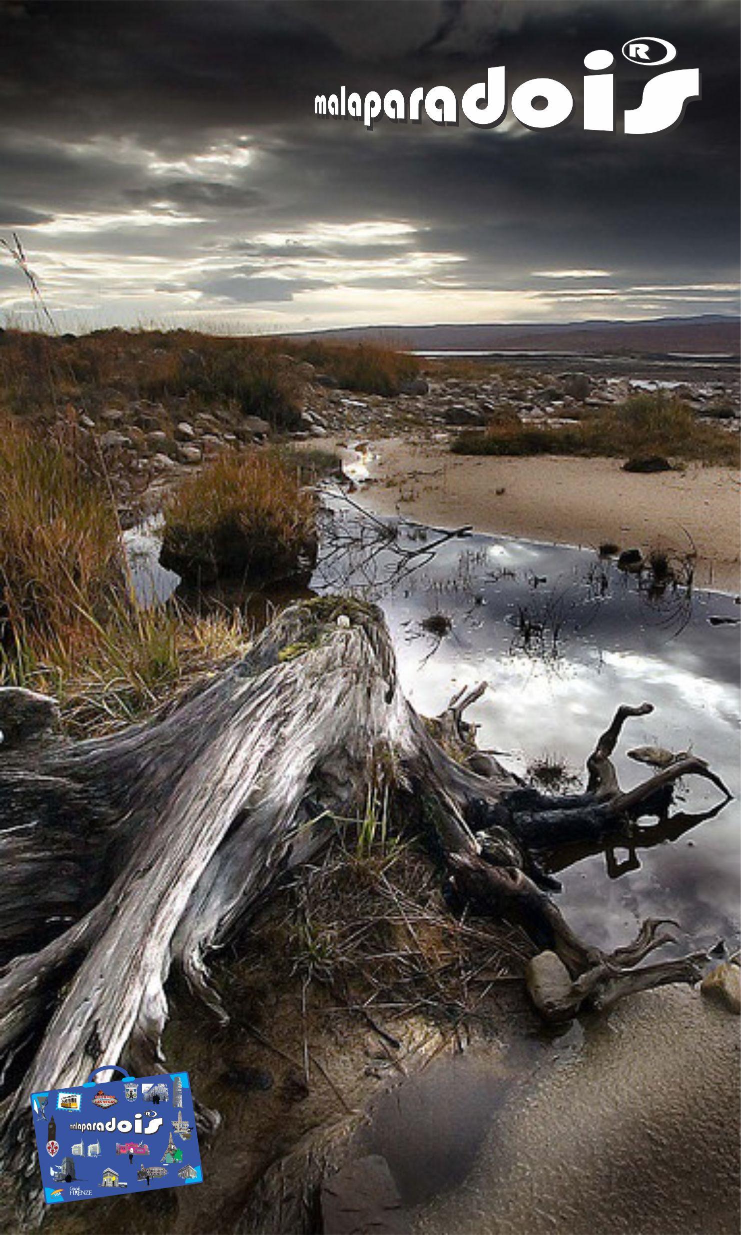 Highlands - Relics Loch Shin