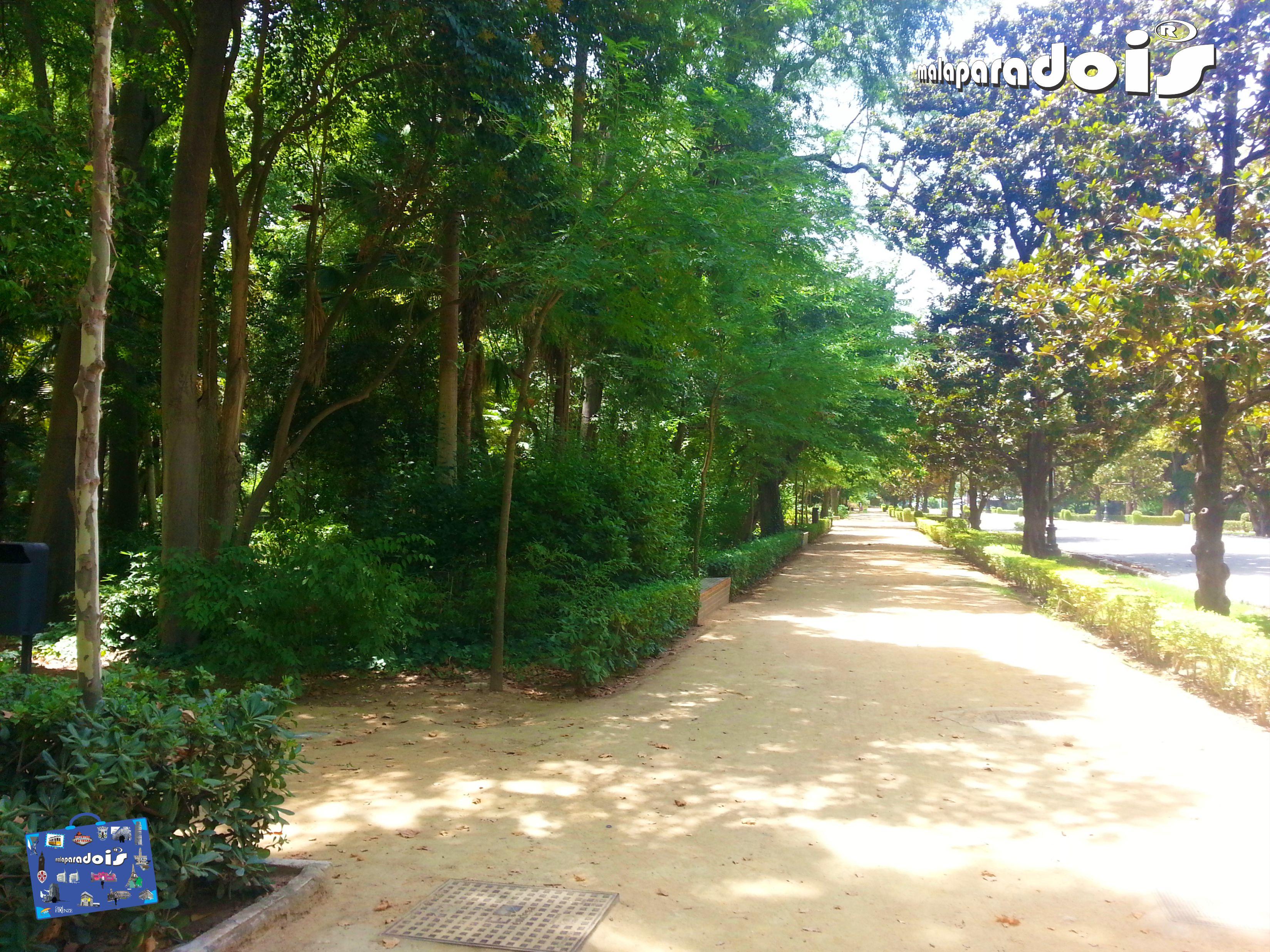 Parque Maria Luiza