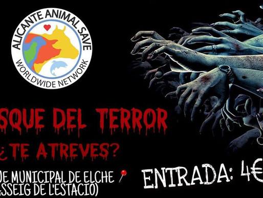 Bosque del terror 31 de octubre