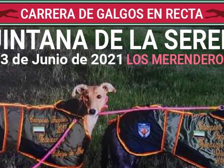 Quintana de la Serena: Carrera de galgos en tres categorías