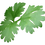 Thumbnail: Tisane Digestion légère BIO