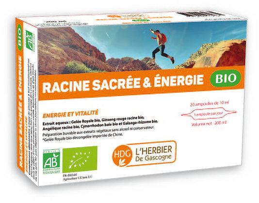 Ampoules - Racine Sacrée et Énergie BIO