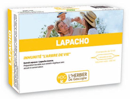 Ampoules - Lapacho