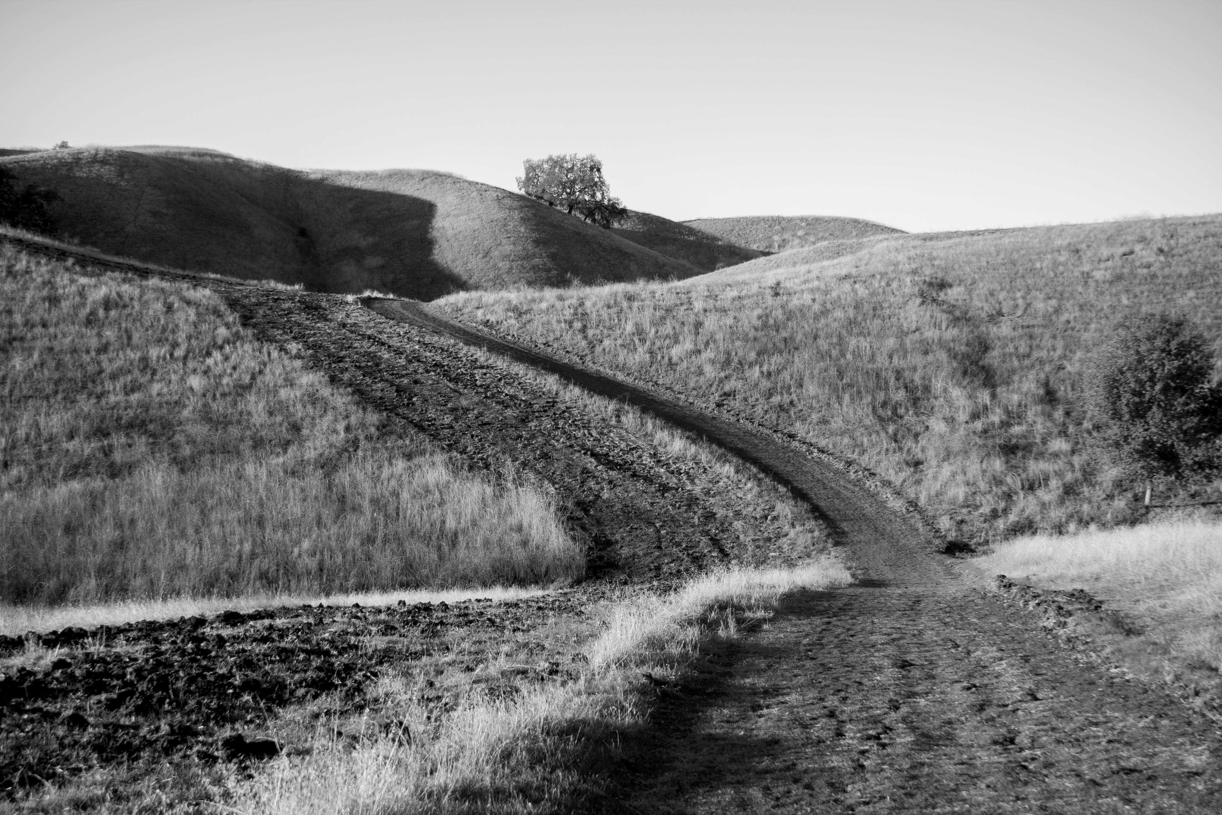 """""""Trails"""""""