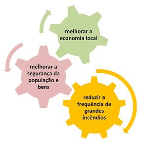 alvares_objectivos_s.png