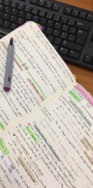 documentos do estudo
