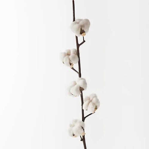 Cotton Spray