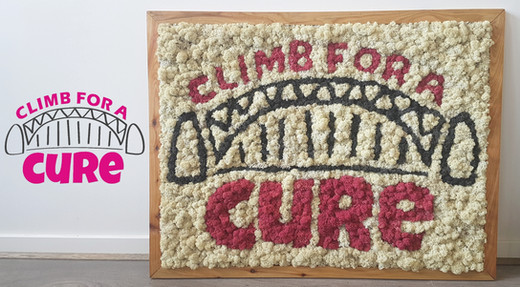 Climb for a cure avant apres.jpg