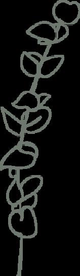 Preservedplants_icon.png
