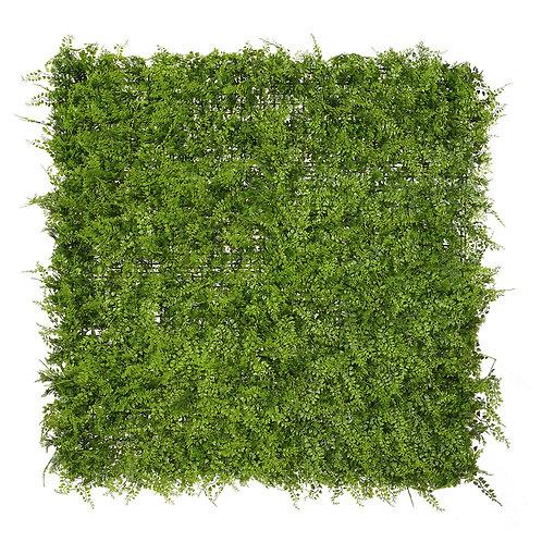 Green fern (UV)