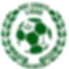 Logo-club-vert-grand-5494a96dv1_site_ico