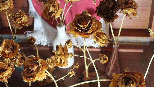 Hearth rose group 2.jpg