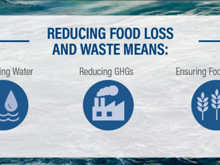 Lets say NO to FOOD WASTE