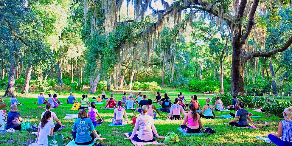 Gentle Yoga in the Gardens