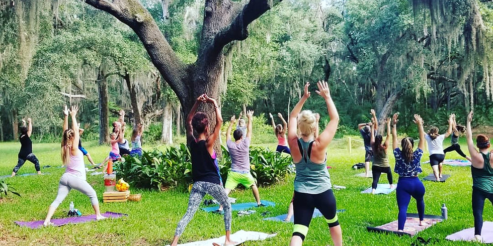 Yoga Flow-All levels with Hailey