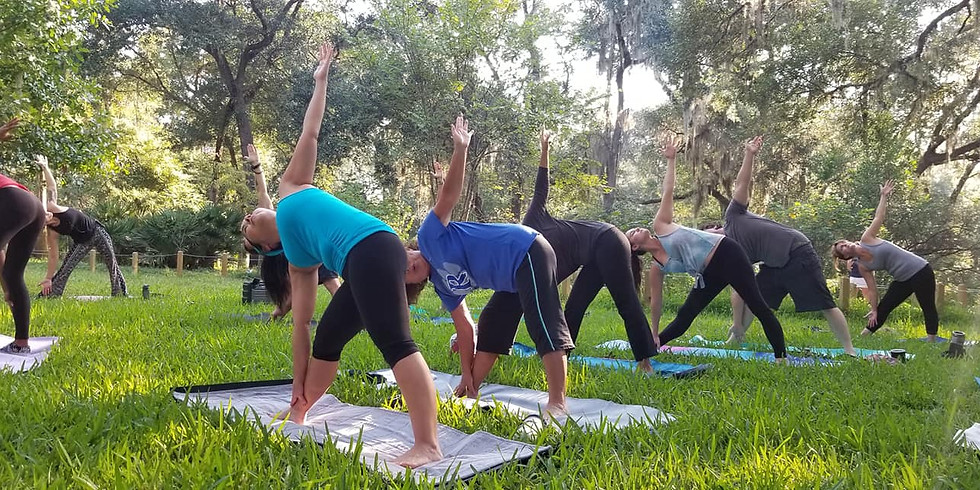 Yoga Flow in the Gardens