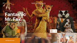 Wes Anderson Movies Website 2