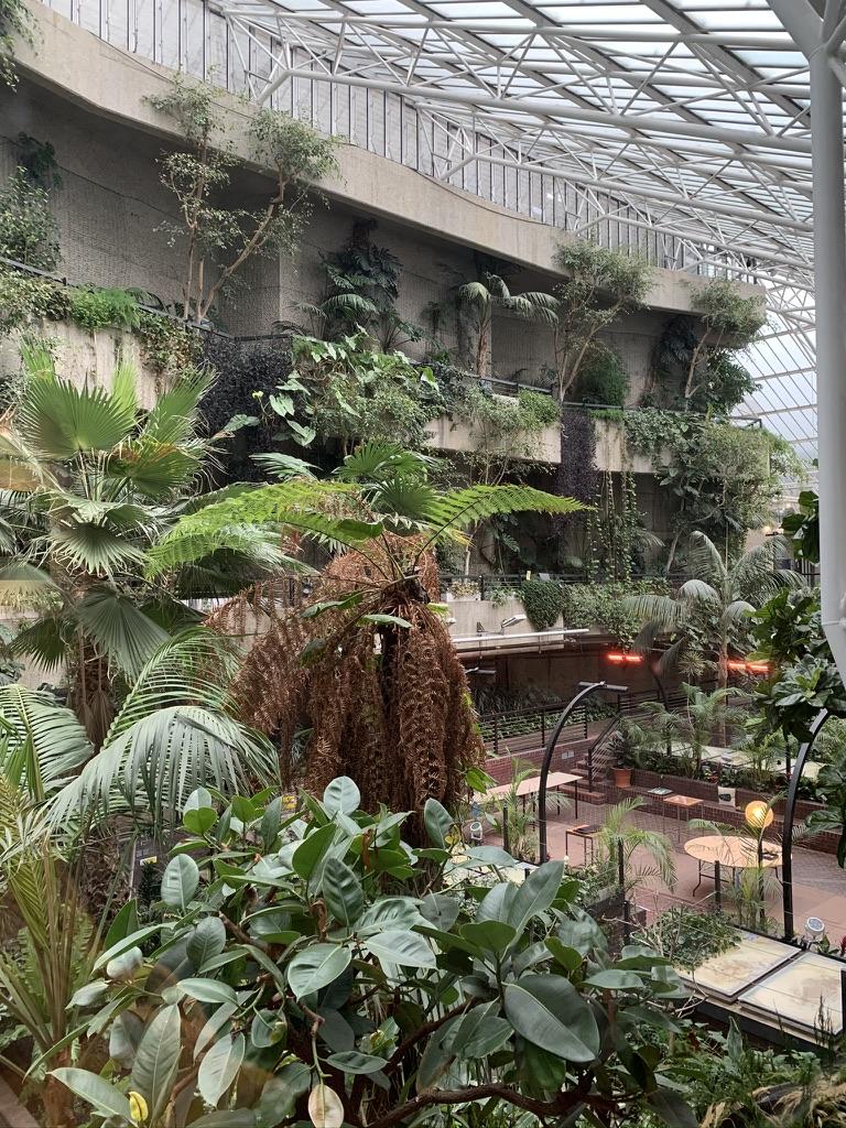 Barbican Secret Garden