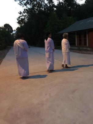 The 3 Day Nun