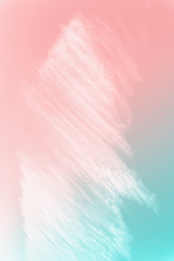 pexels-photo-2088205.jpeg