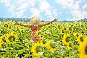 Woman in field of sunflowers.jpg