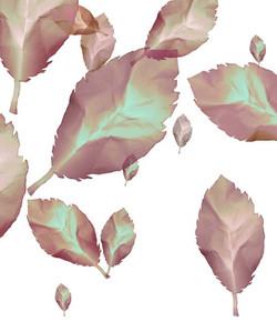 automne-II.jpg