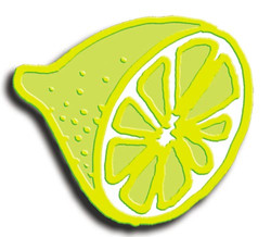 Demi-citron-montage.jpg