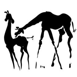 girafes-2.jpg