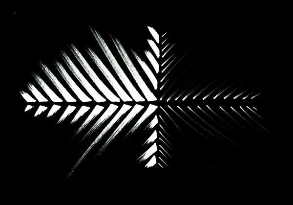 reflets-02-neg.jpg