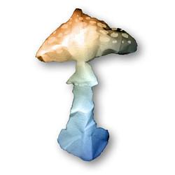 champignon-I.jpg