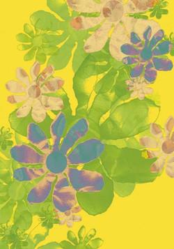 fleurs-I.jpg