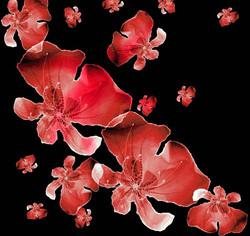 fleur-D-compo-4.jpg
