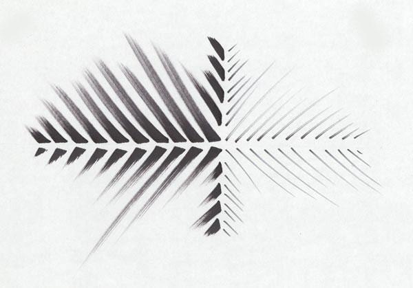 reflets-02.jpg
