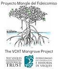 Logo Mangrove Project.jpg