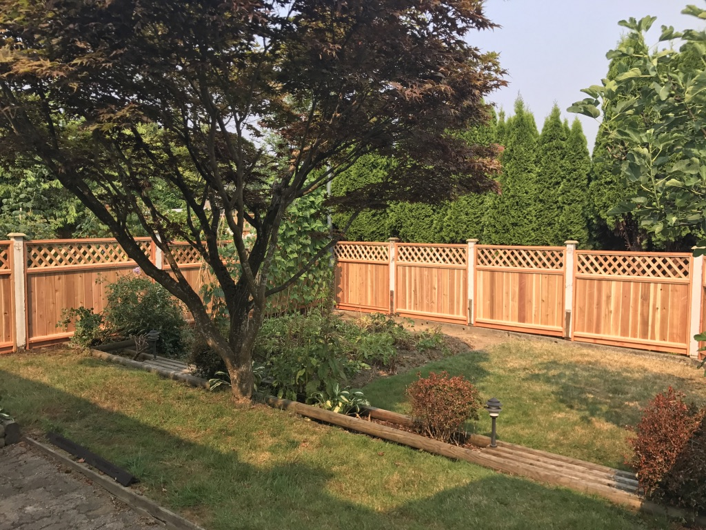 Unstained/Painted Fence