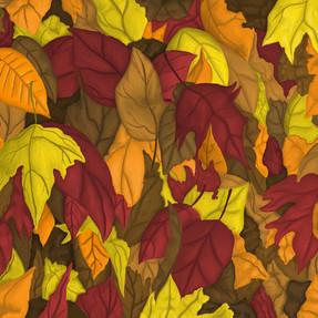 Fall_Leaves_3.jpg