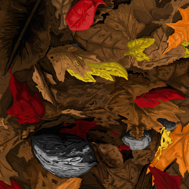 191 - Leaves and Stones - 1500x2100.jpg