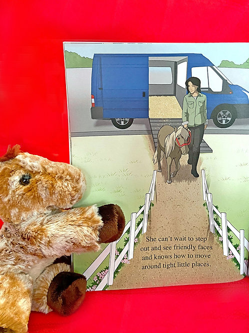 """ONE  8"""" PLUSH MINI  - AUTHOR'S CHOICE ONE OF FIVE DIFFERENT STYLES"""