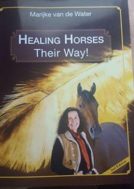 Healing Horses Their Way!