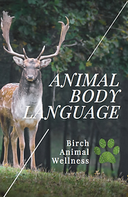 Animal Body Lanuage eBook