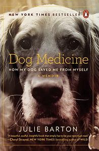 dog medicine.jpg