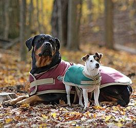 Shedrow K9 Tundra Dog Coat