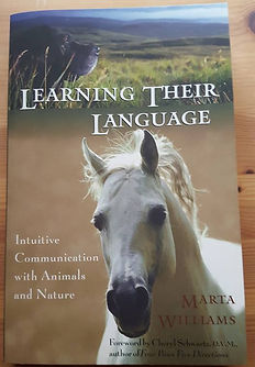 Learning Their Language: Intuitive Communication with Animals and Nature