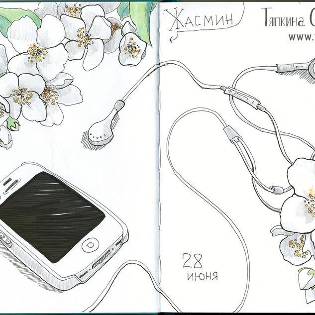 Скетч, жасмин и телефон