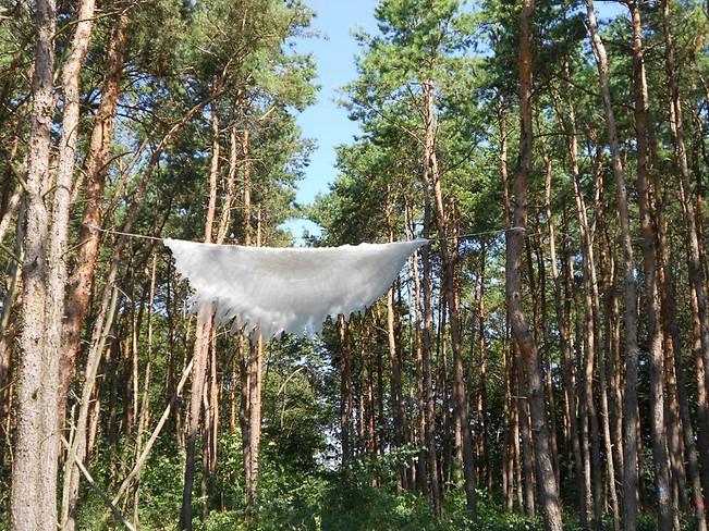 """Lista para volar"" Capas de tela cosida 5 mt de diámetro Bewegter Wind 2016"