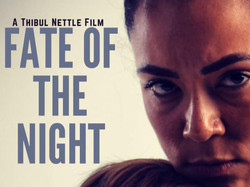 Fate of the night official poster_edited_edited