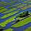 Thumbnail: THE POLDER LANDSCAPE