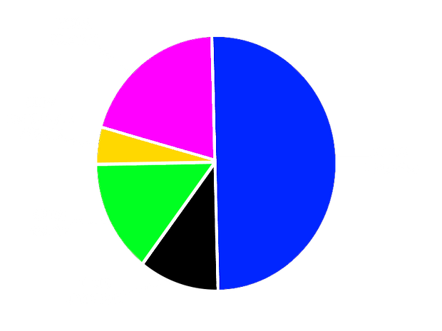 ROED FUND ALLOCATION.png